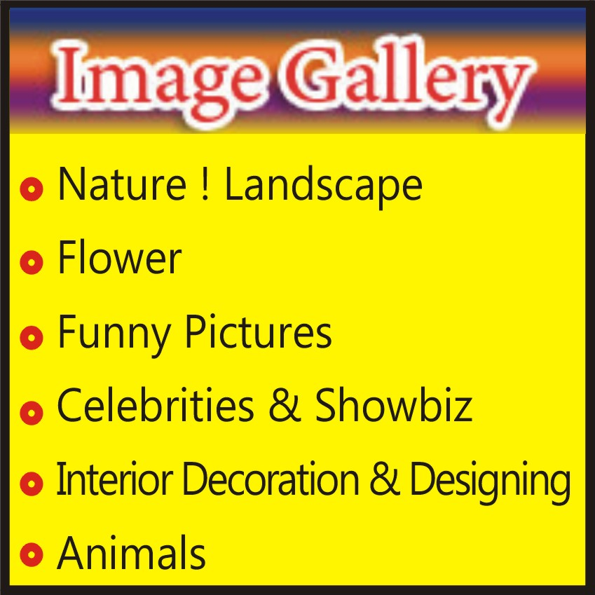 Image Gallery1